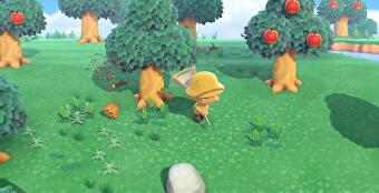 Animal_Crossing_New_Horizons_Wasps_4