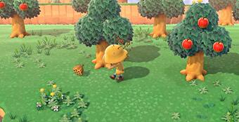 Animal_Crossing_New_Horizons_Wasps_5