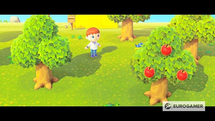 animal_crossing_fruit_grow_time_eat_1