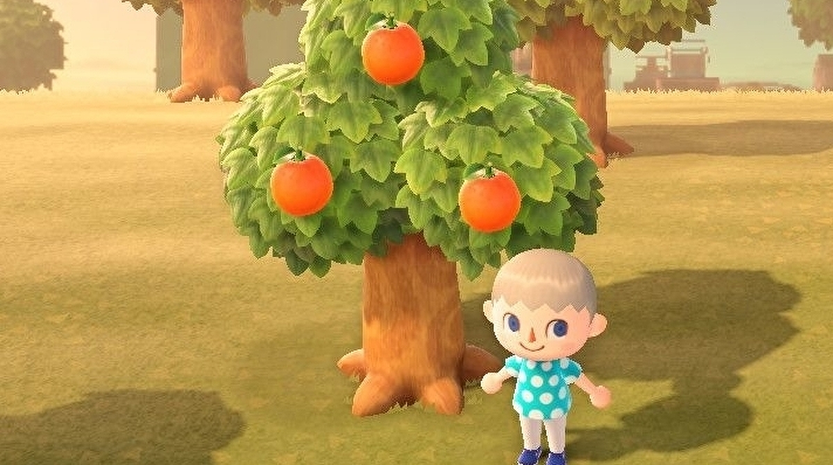 Animal Crossing Fruit Grow Back Time Eating Benefits And How To Plant Fruit Trees In New Horizons Eurogamer Net
