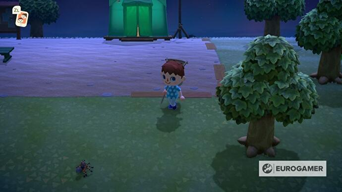animal_crossing_tarantulas_1