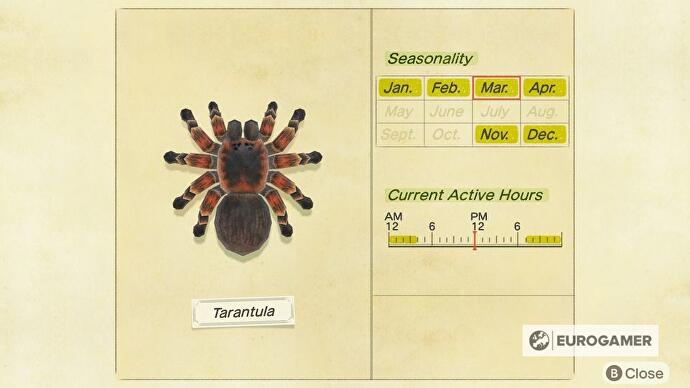 animal_crossing_tarantulas_3