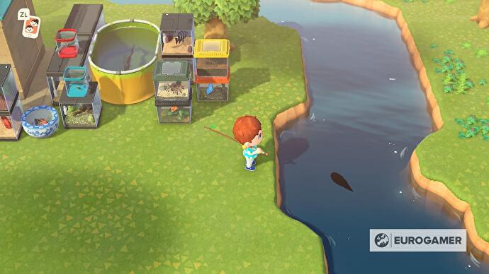 animal_crossing_fishing_rare_catch_10