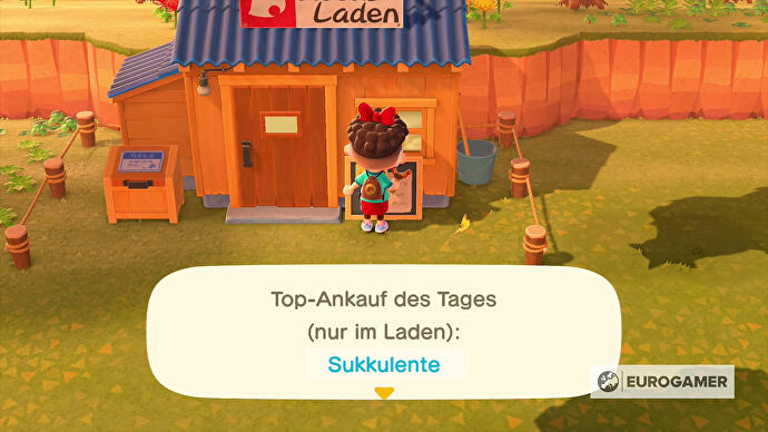 Animal_Crossing_New_Horizons_Top_Ankauf_des_Tages_Nooks_Laden