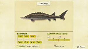 animal_crossing_sturgeon