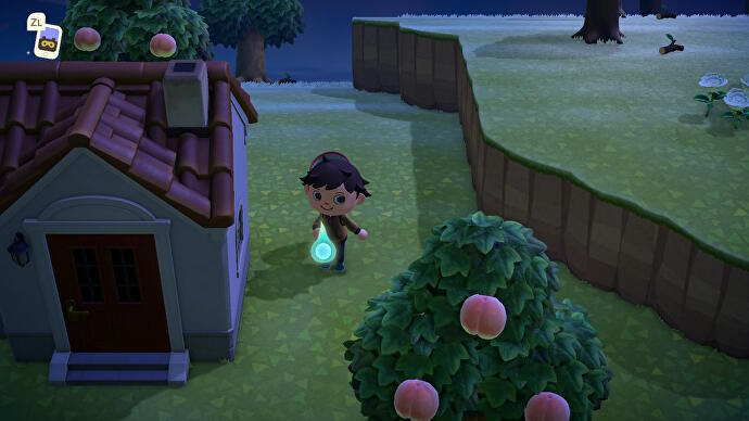 Seelenfragmente_fuer_Buhu_finden_in_Animal_Crossing_New_Horizons_2