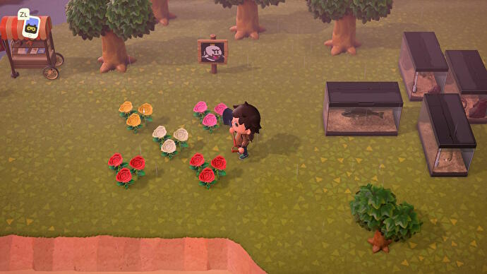 Blumen_zuechten_in_Animal_Crossing_New_Horizons_2