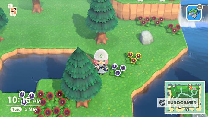 Animal_Crossing_Golden_Trout_5