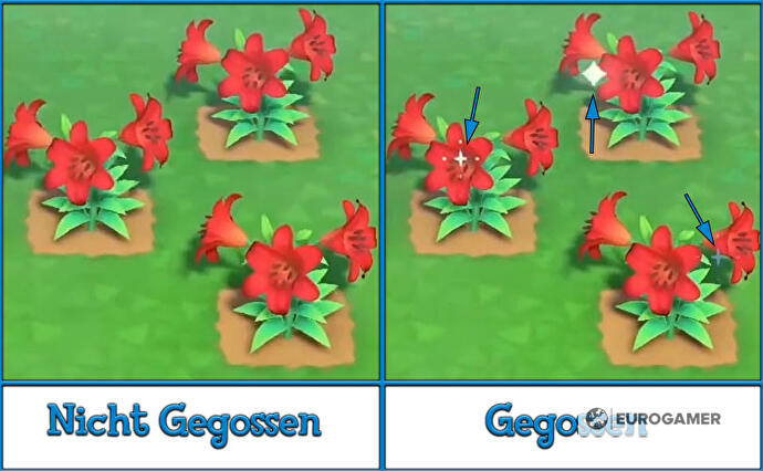 Animal_Crossing_New_Horizons_Blumen_gewaessert_nicht_gegossen