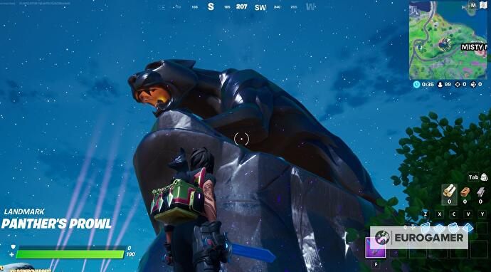 Fortnite_Panther_1