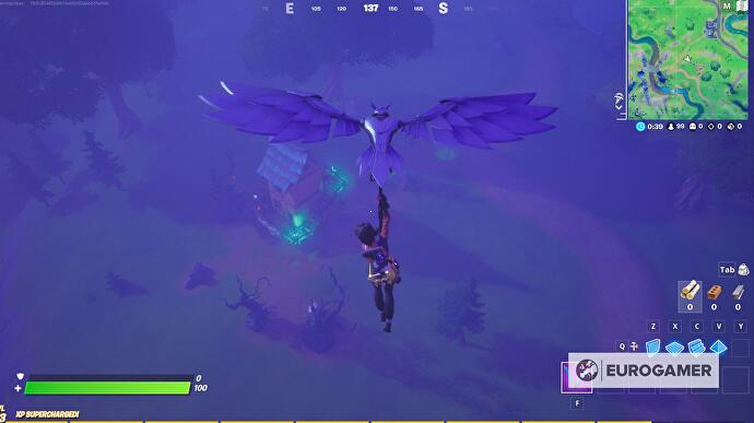 Fortnite_Witch_Broom_5