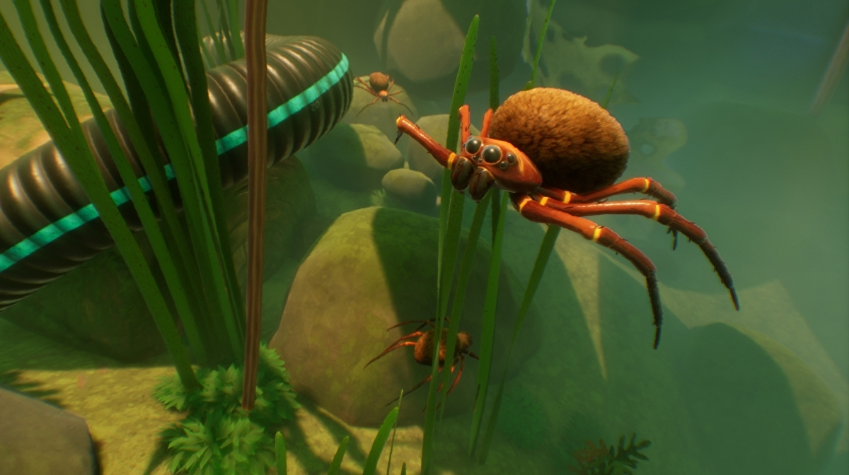 Grounded's Underwater-themed Koi Pond Update Is Now Live