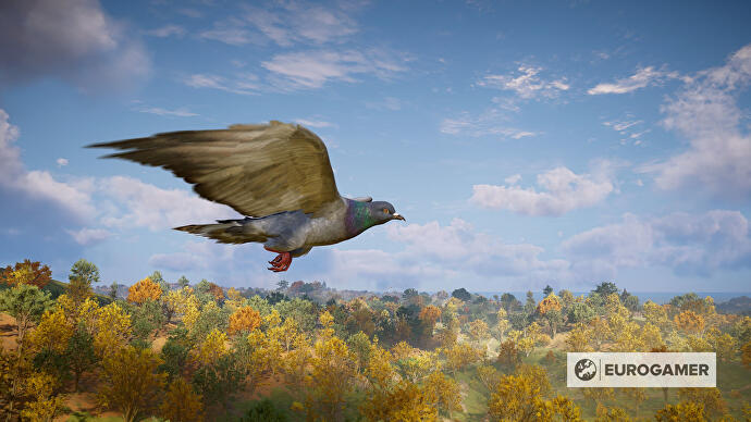 Assassin's Creed Valhalla Amazon Prime rewards let you fly around as a pigeon