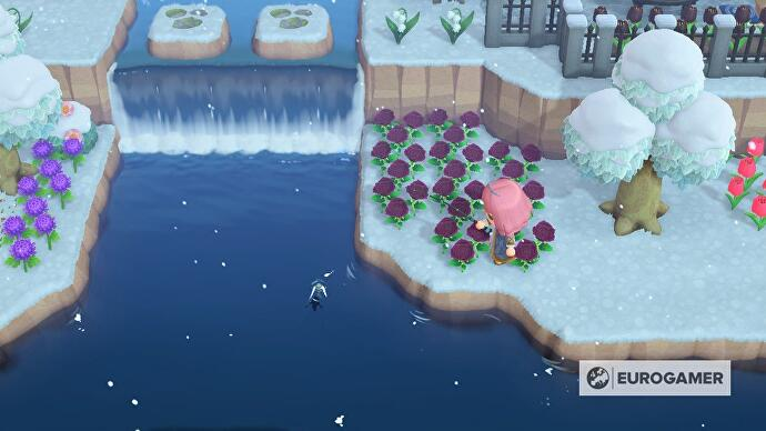 Animal_Crossing_March_1