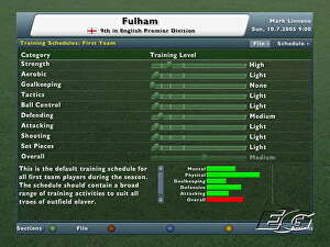 Football Manager 2006 • Eurogamer net