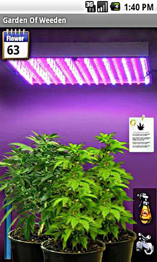 Virtual High Inside Androids Weed Culture Modojo