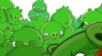 Bad Piggies No Guaranteed Success For Rovio Entertainment
